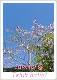 Teluk Batik 1st Visit